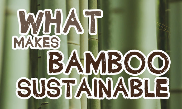 What makes bamboo a sustainable material