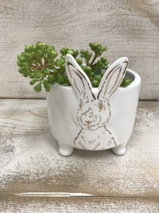 Rabbit Bowl with Feet