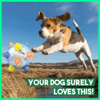 (BUY 1 GET 1 FREE)JUMPING ACTIVATION BALL FOR DOGS
