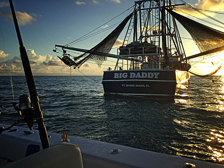 big daddy shrimp boat