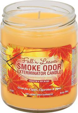Smoke Odor Candle 13oz Fall 'n Leaves