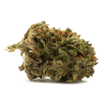 Dried Cannabis - MB - Houseplant Hybrid Flower - Grams: - Houseplant