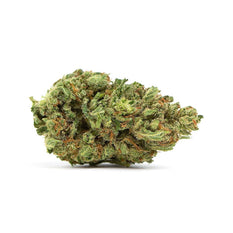 Dried Cannabis - MB - Canaca Jack Herer Flower - Grams: - Canaca