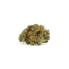 Dried Cannabis - SK - Tweed Argyle Flower - Format: - Tweed