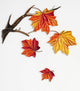 Paper Quilling Art Kit Maple Leaf Patterns BQ90277