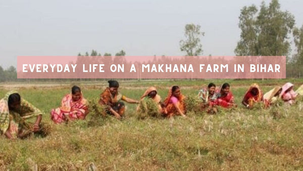 nine women sitting next to one another in a field in bihar, india