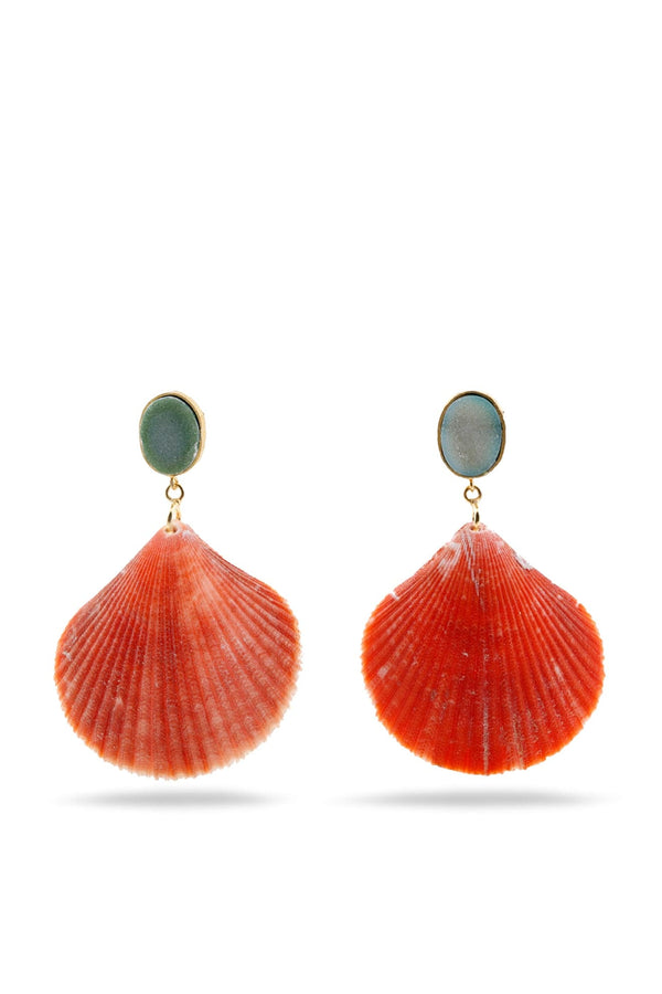 Agate Druzy and Seashell earrings