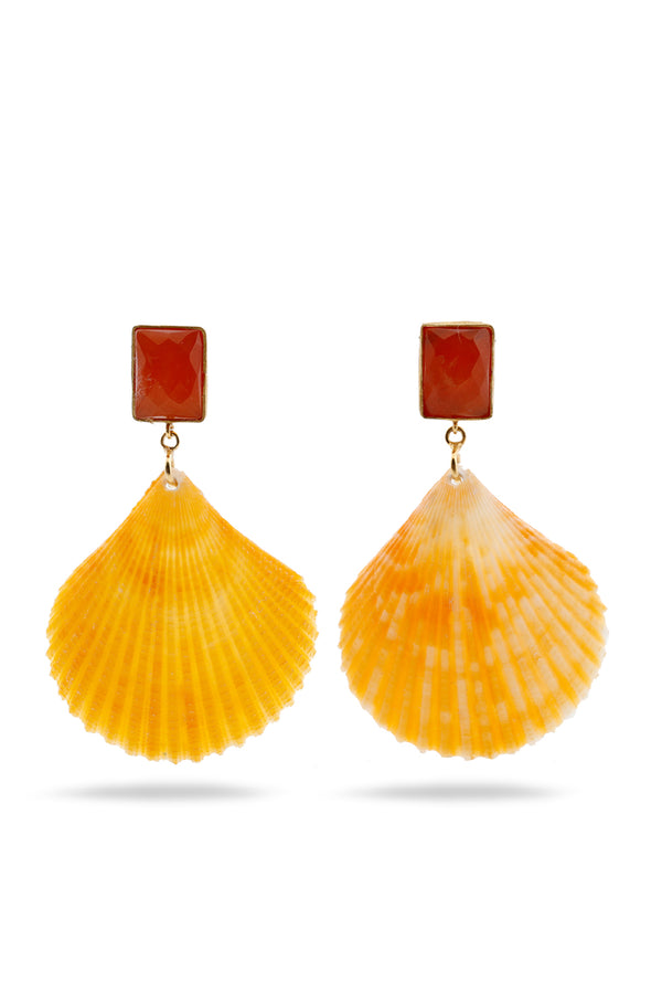 Cornaline and Seashell earrings