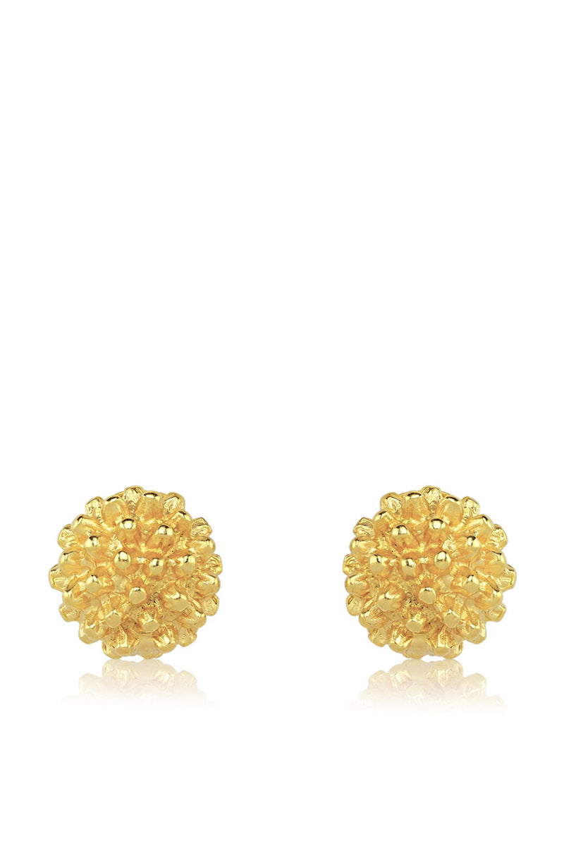 Rond Earrings - Maison Orient