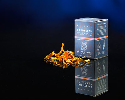 Cordyceps MANNA - Cordyceps militaris honey shot