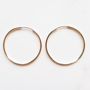 The Diana Hoops