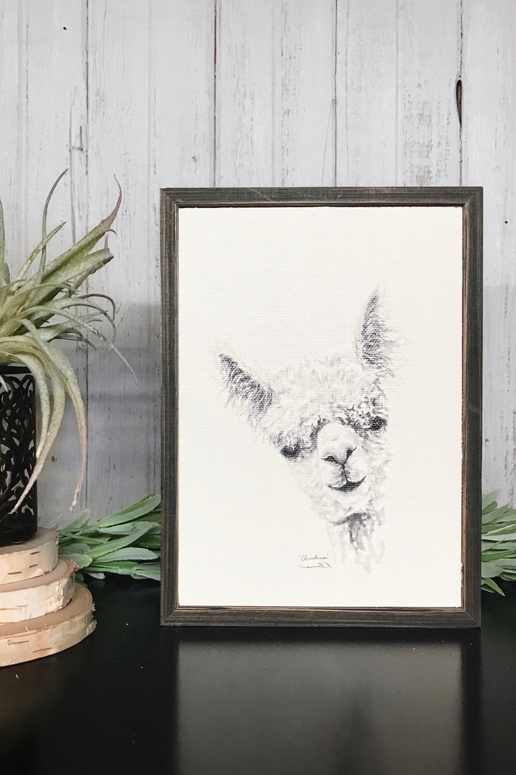 Llama Draw You A Portrait - Christina