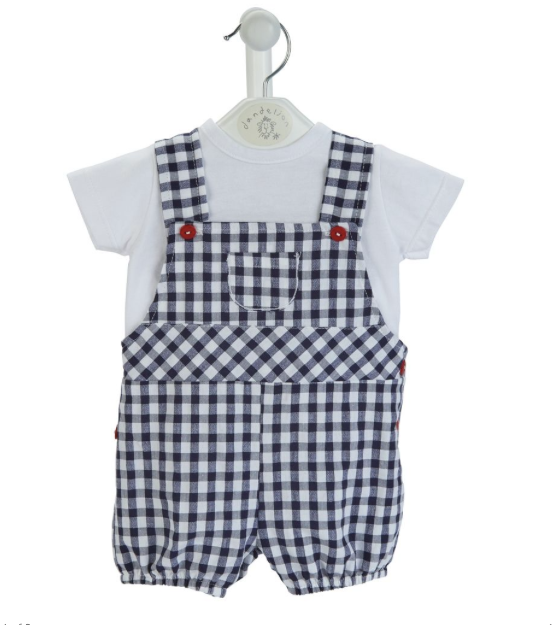 Dandelion Checked Seersucker Boys Dungaree & T Shirt Set