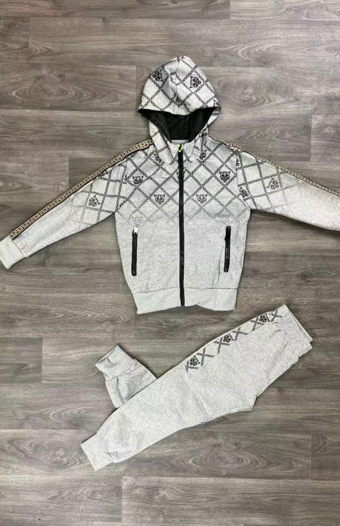 Boys Lion Grey Tracksuit