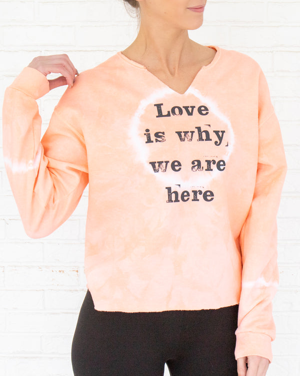 Love Is Why We Are Here - Cantaloupe Sweatshirt
