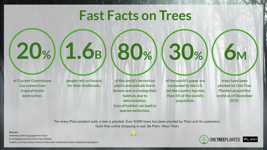 fast facts on trees by one tree planted x plain los angeles