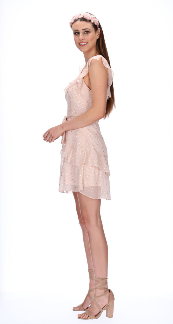 ERINA DRESS - BLUSH STARS