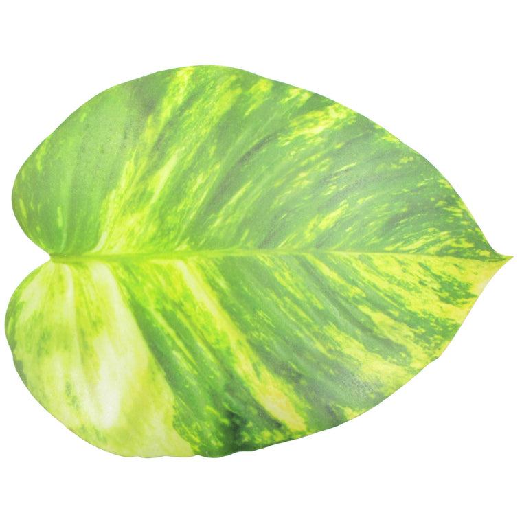 Pothos Vine Leaf Foam Placemat - TropicaZona