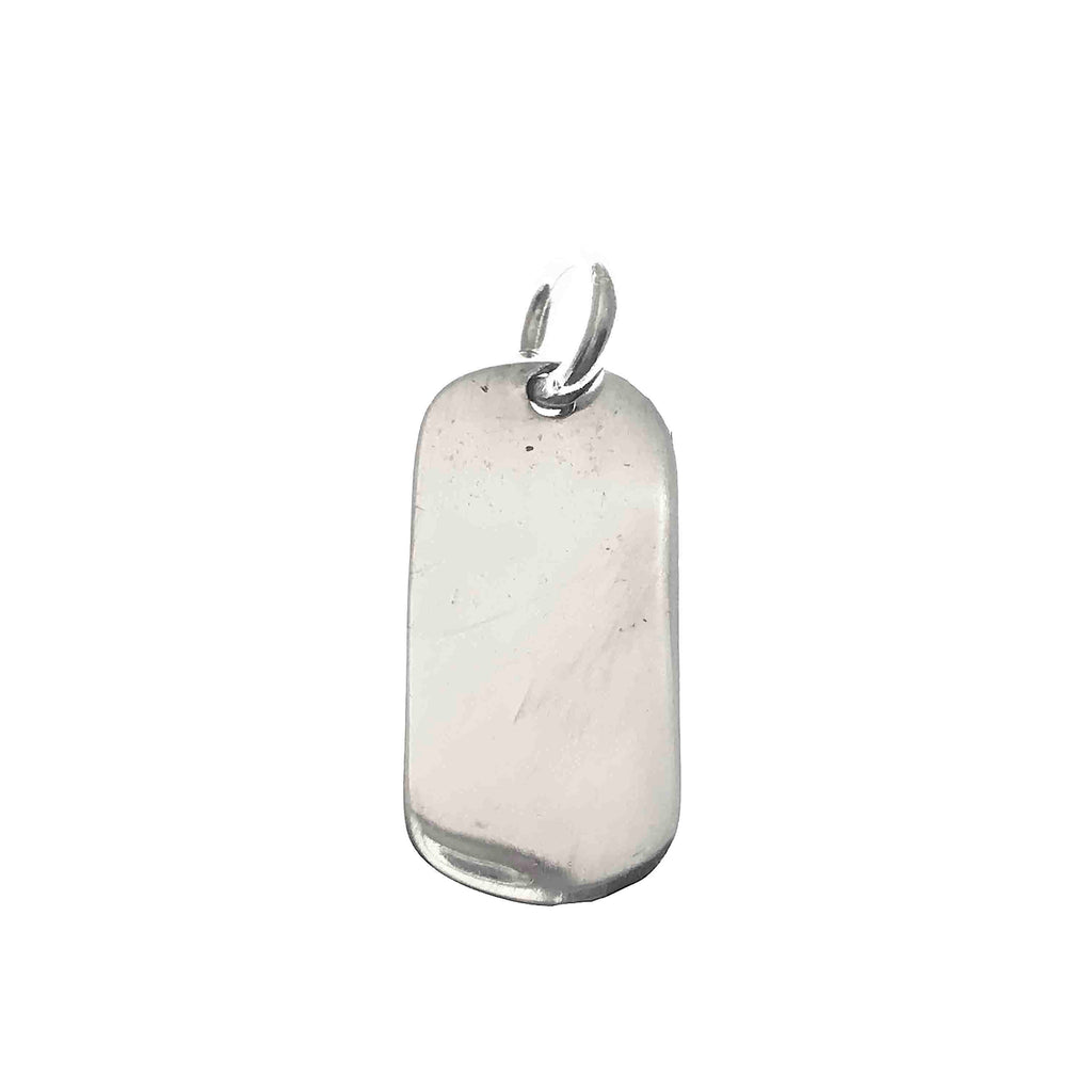 little silver dog tag