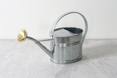French Galvanized Watering Can