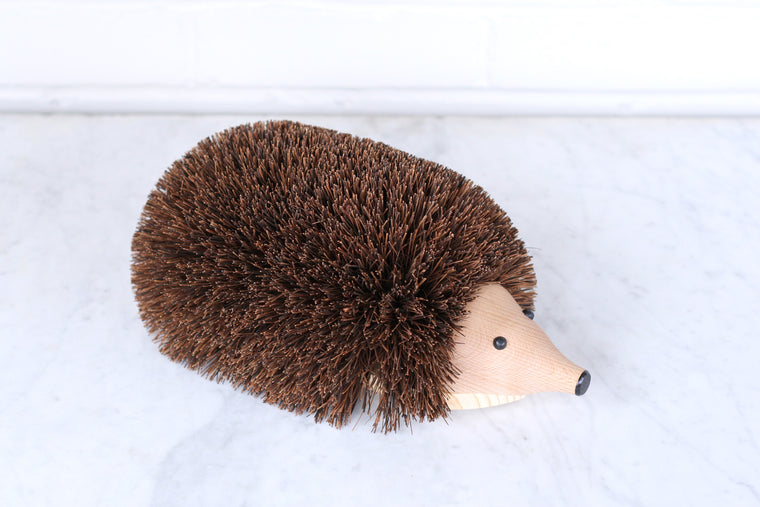 Shoe Cleaning Hedgehog