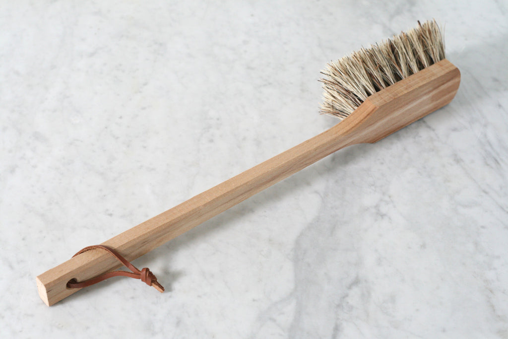 Long Handled Outdoor Brush
