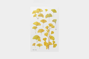 Appree Pressed Flower Stickers - Ginkgo