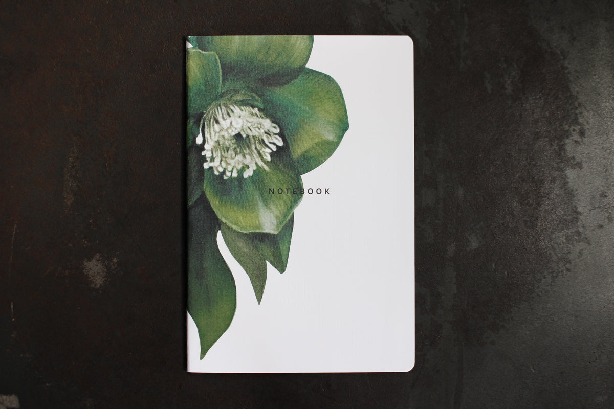 Father Rabbit Notebook - Hellebore