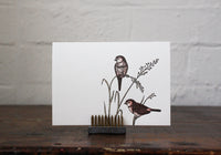 Letterpress Greeting Card - Two Birds