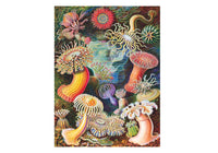 New York Puzzle Company 1000 Pc Puzzle - Sea Anemones
