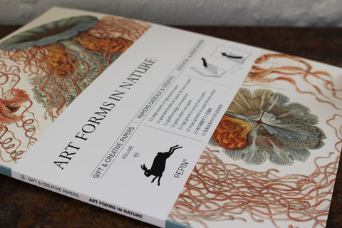 Pepin Press Gift & Creative Papers Book - Art Forms In Nature