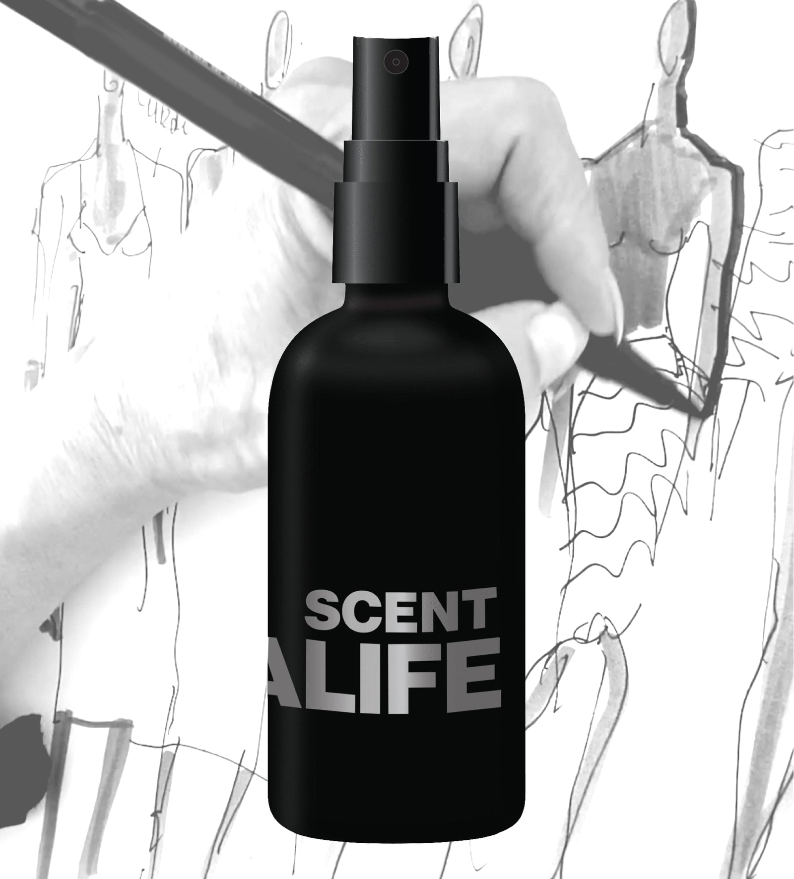 THE SCENT WITH NORMA'S ORIGINAL SKETCH