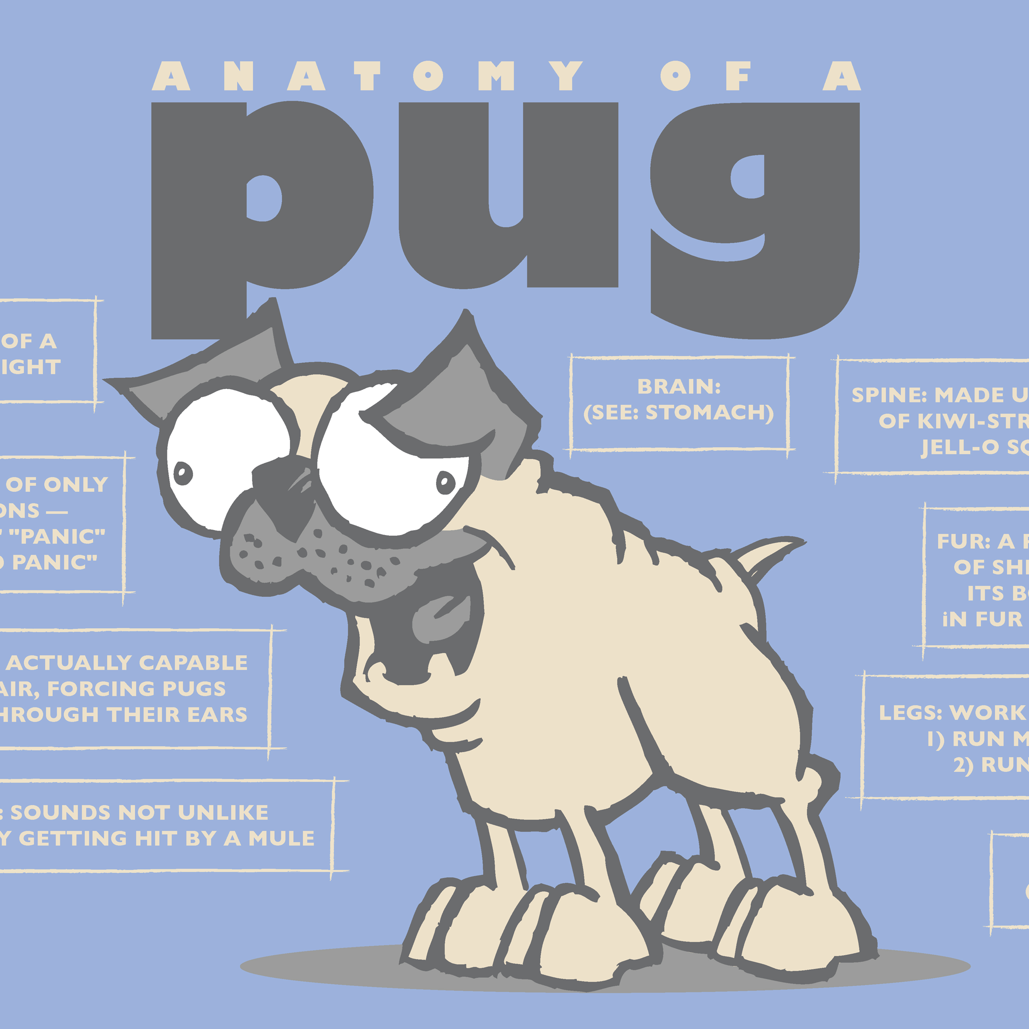 Print: Anatomy of a Pug