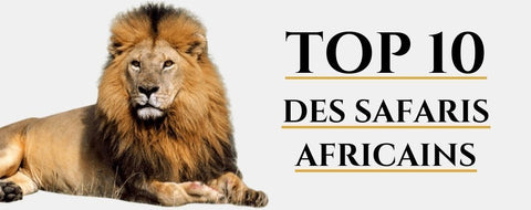 Top 10 safaris africains