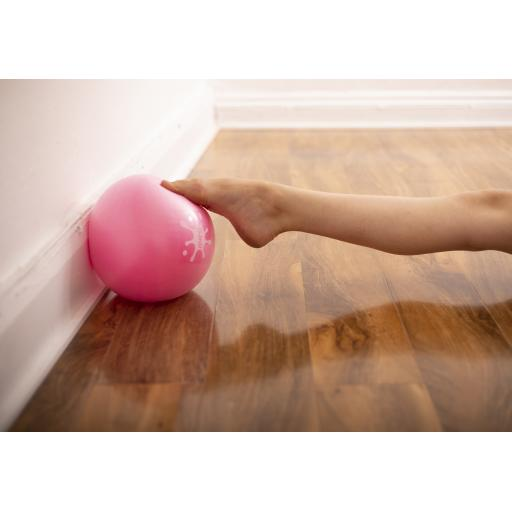 Exerciser Ball