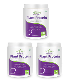 Plant Based Protein Powder - 100% Vegan - Rich In BCAAs