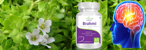 nature's velvet Brahmi Powder Bacopa monnieri 250g - Pack of 1