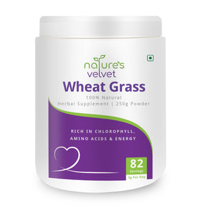 Wheat Grass Powder - Rich in Chlorophyll, Amino Acids & Energy - 100 GMS Powder