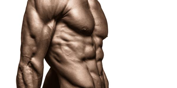 Bridging with SARMs - What the PRO's dont want you to know!