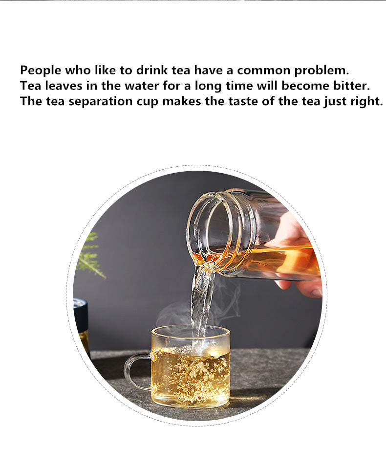 Glass Tea Infuser Bottle