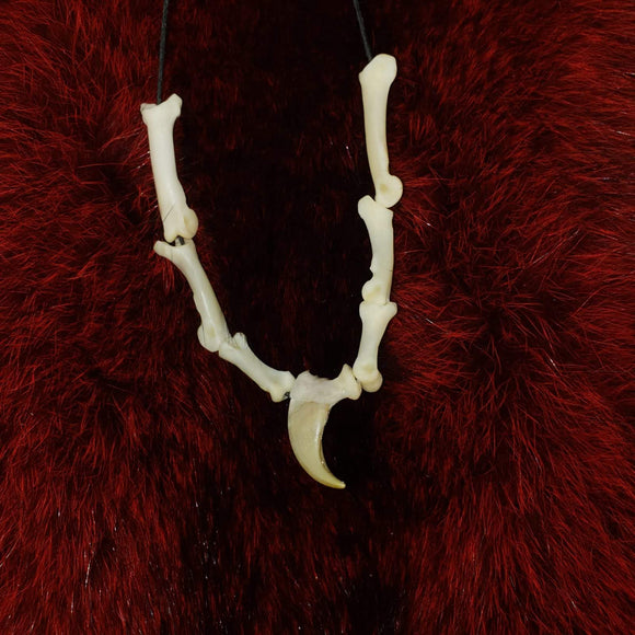 Lynx Claw & Bone Necklace