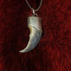 Polar Bear Claw Necklace