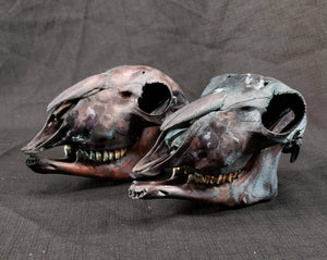 Black Sheep Skulls