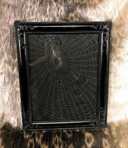 Real Framed Spiderweb