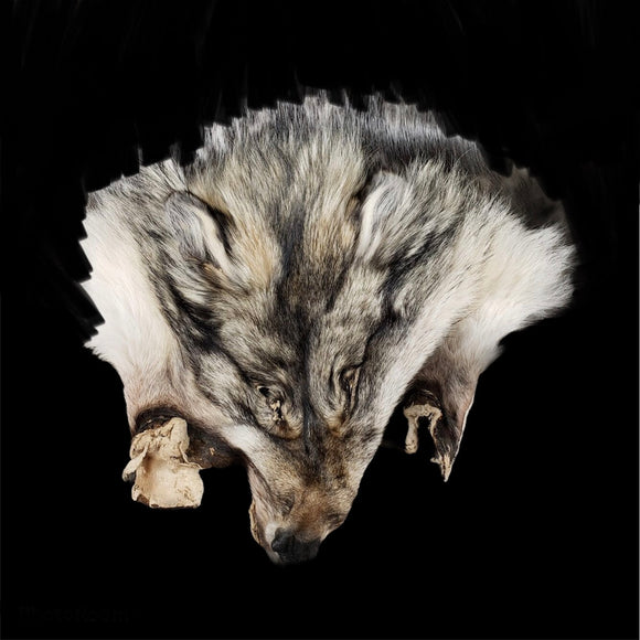 Wolf Face Furs