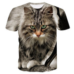 BIAOLUN New Cool T-shirt Men/Women 3d Tshirt Print two cat Short Sleeve Summer Tops Tees T shirt Male S-6XL