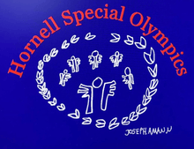 Load image into Gallery viewer, Hornell Special Olympics Gildan® - DryBlend® Crewneck Sweatshirt 12000