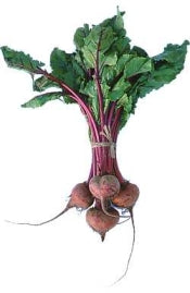 Beetroot - Bunch (3)