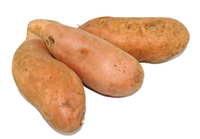 Sweet Potato - Gold (medium size)
