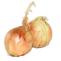 Onion - Brown (medium)